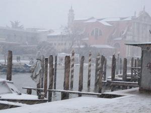 A snowstorm!