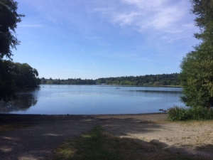 Run around Green Lake on Saturday...