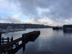 West shore of Lake Union