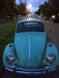 I fell in love with this old beetle... too bad it wasn't for sale.