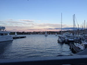 Sailboats on Lake Union!